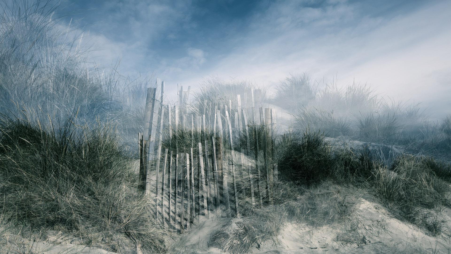 Dune (2011)