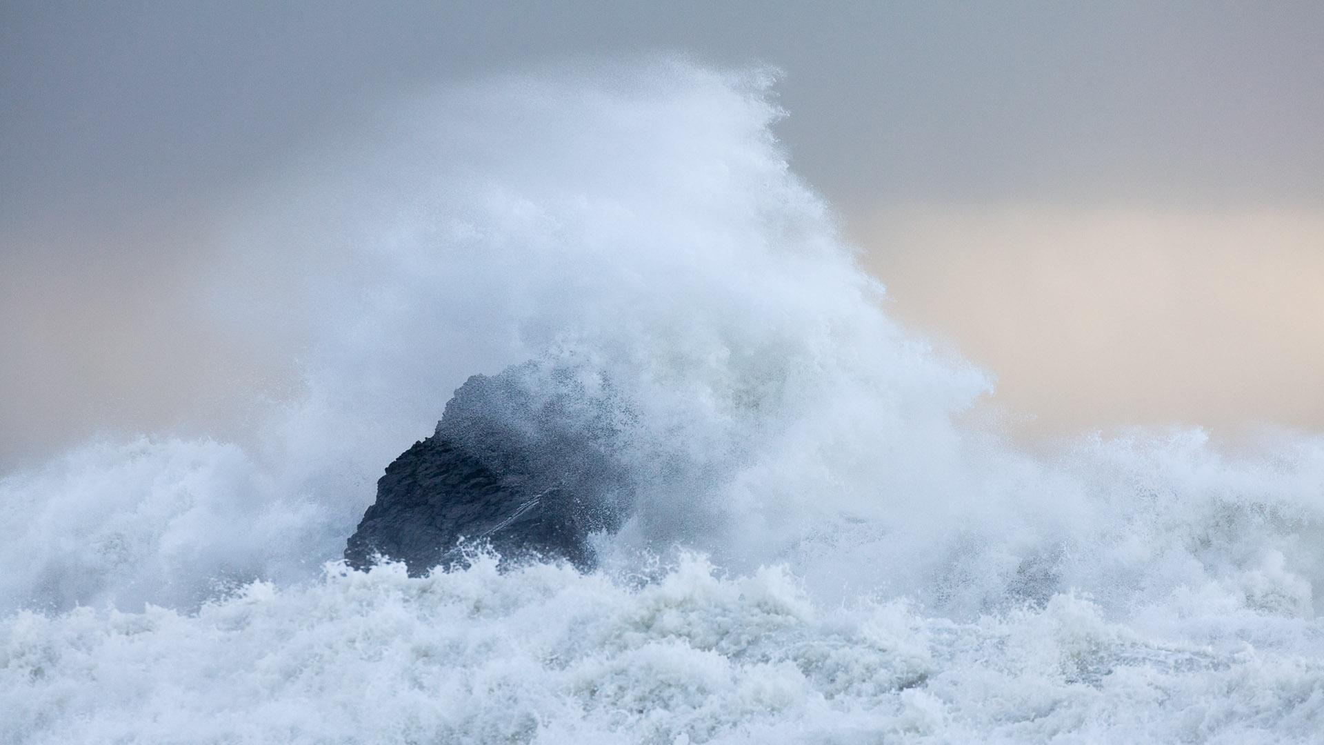 Dorset Sea Power