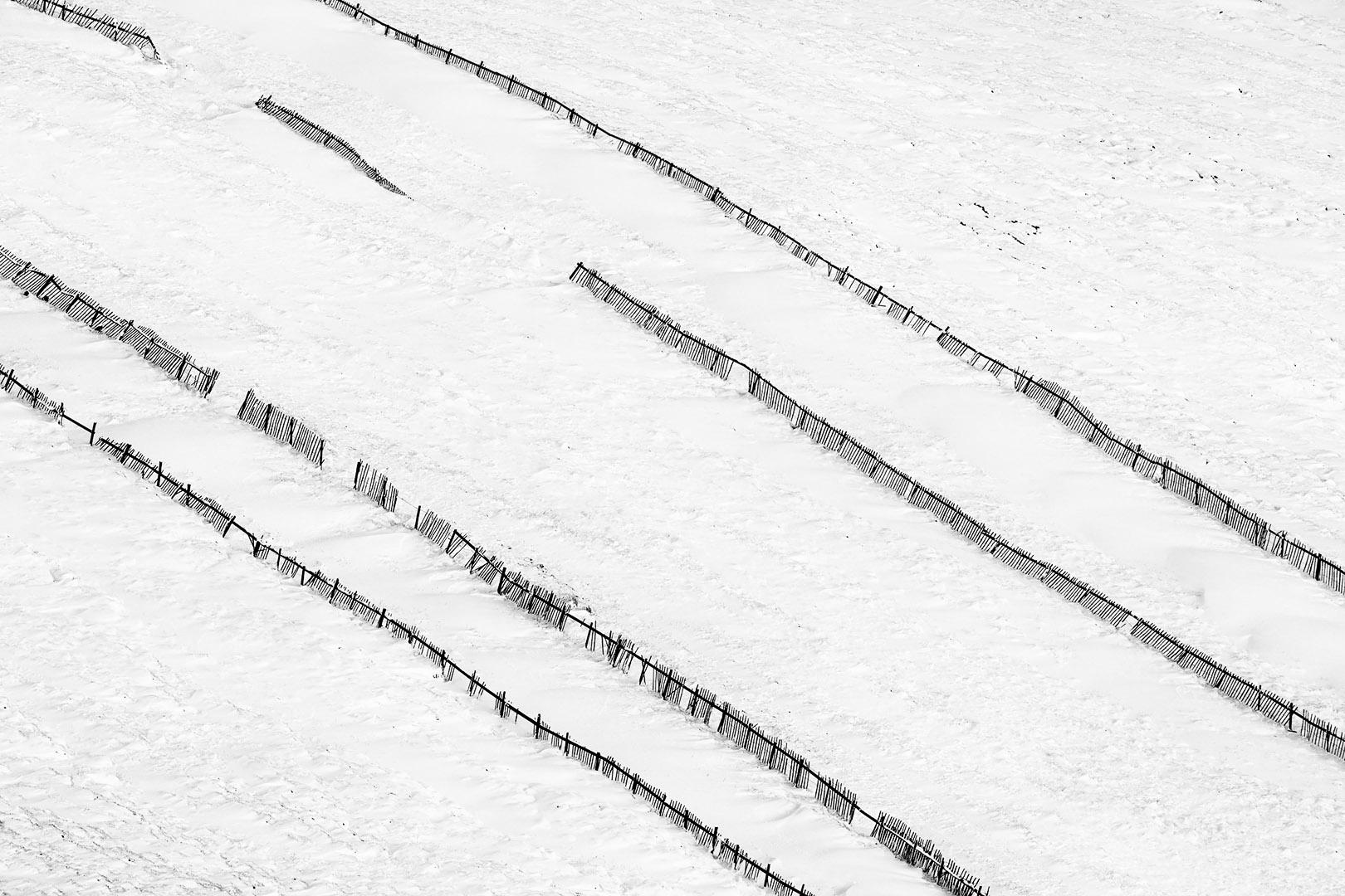 Snow Fence I
